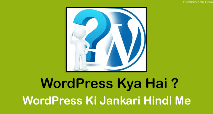 what is wordpress hindi