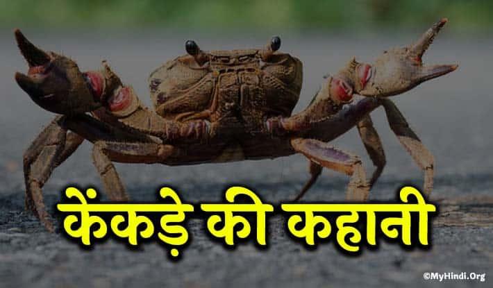 Story In Hindi-kekade kee kahaanee