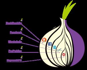 TOR Browser क्या है ? यह क्या काम करता हैं ?